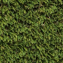 Regency Artificial Grass