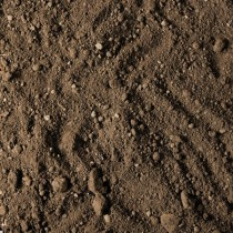 Compost Top Soil